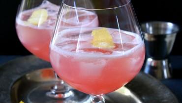 Rhabarber Gin Fizz
